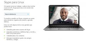 Skype Linux 01